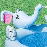 Olifant zwembad_