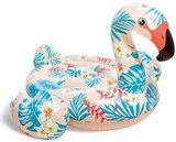 Tropical flamingo_