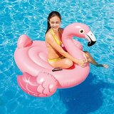 Flamingo Ride-On_