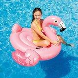 Flamingo Ride-On_