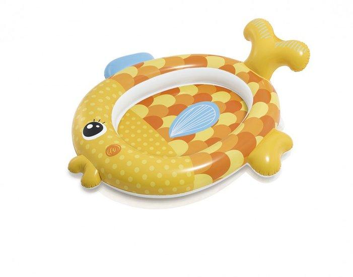 Zwembad goudvis