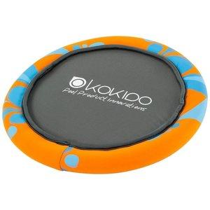 Waterfrisbee